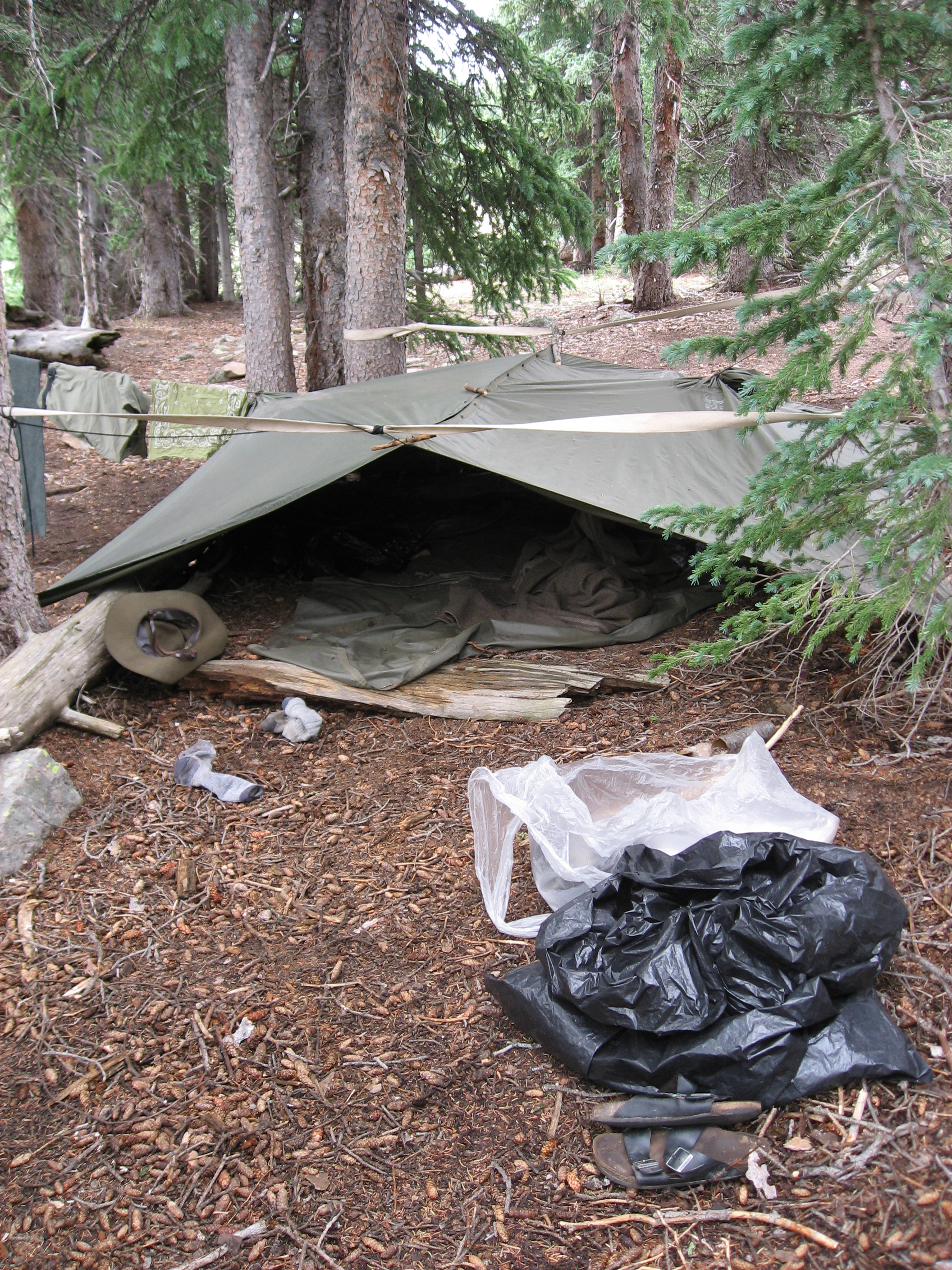 Our poncho tent which I was pretty proud of. Hannes Leland u0026 I shared it. & Survival School: Day 10 - by nikhil bhatla